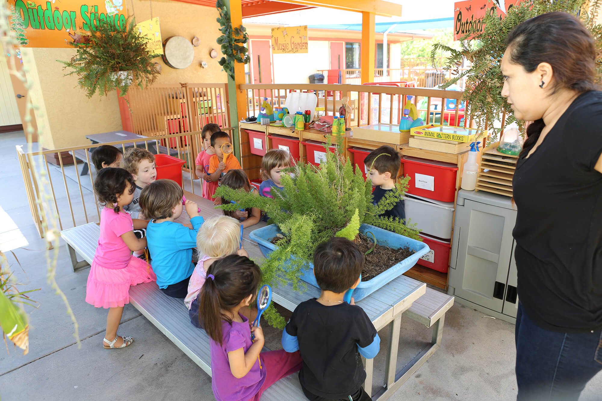 Montessori Aliso Viejo outdoor-science